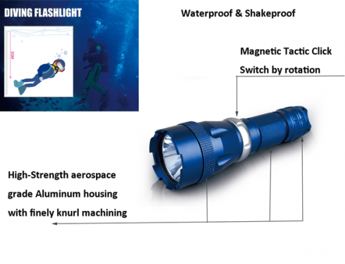 Dive Flashlights